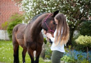 Der Traum vom eigenen Pferd