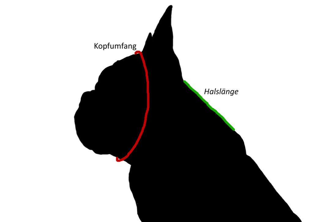 Kostenlos schnittmuster hund ▷ Die